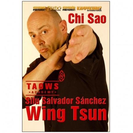 Wing Tsun Taows academy Chi sao - Salvador Sanchez