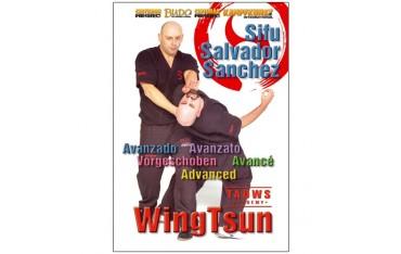 Wing Tsun Taows academy avancé - Salvador Sanchez
