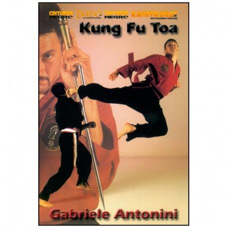 Kung Fu Toa Vol.2 - Gabriele Antonini
