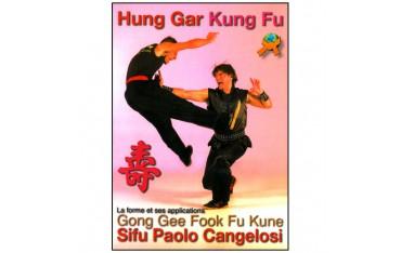Hung Gar Kung Fu, Gong Gee Fook Fu Kune, la forme et ses applications - Sifu Paolo Cangelosi