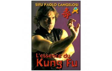 L'essence du Kung Fu - Sifu Paolo Cangelosi