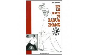 Sur les traces du Bagua Zhang - José Carmona