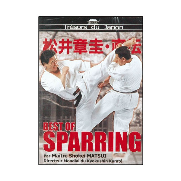 Best of Sparring - Maître Matsui